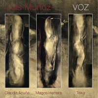 VOZ-_CD_COVER__copy_2
